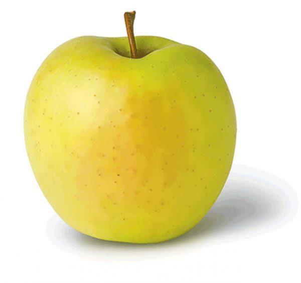 'golden', 'de;icious', 'obelis', 'saldiniai', 'obuoliai'